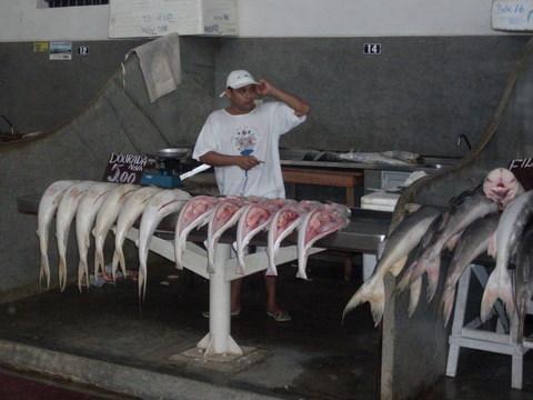 Peixeiro: estripador de peixes.