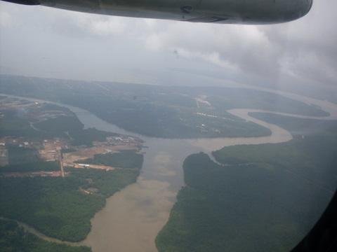 Visão do avião sobre a floresta.